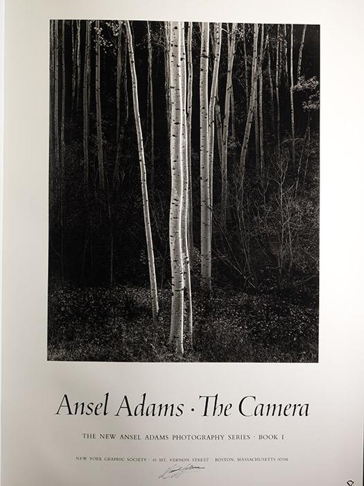 Poster signed. Aspens. Camera