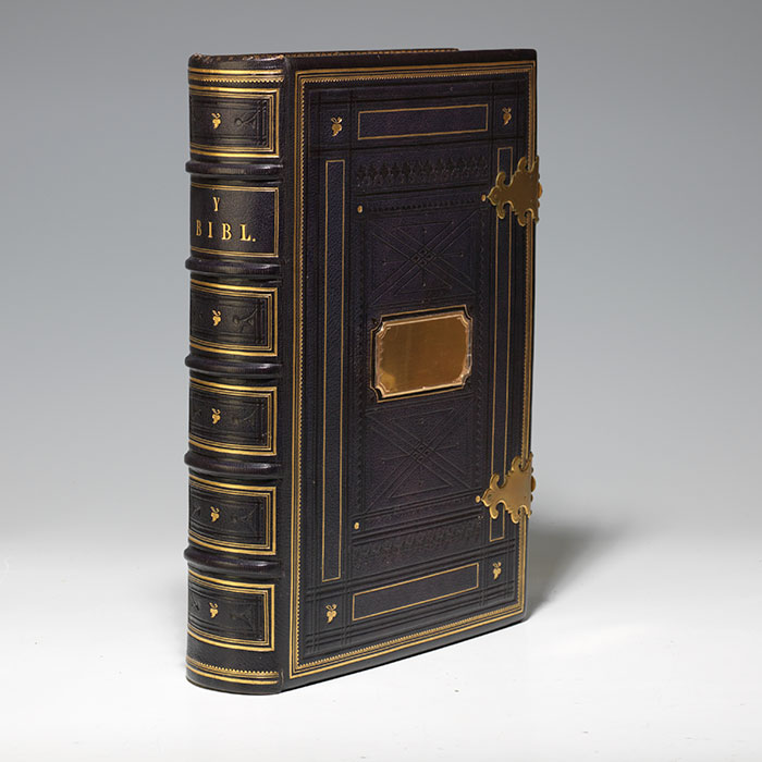 Bibl yr Addoliad Teuluaidd [Bible in Welsh]