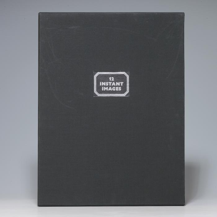 Twelve Instant Images on Polaroid Type 105 Positive/Negative Film