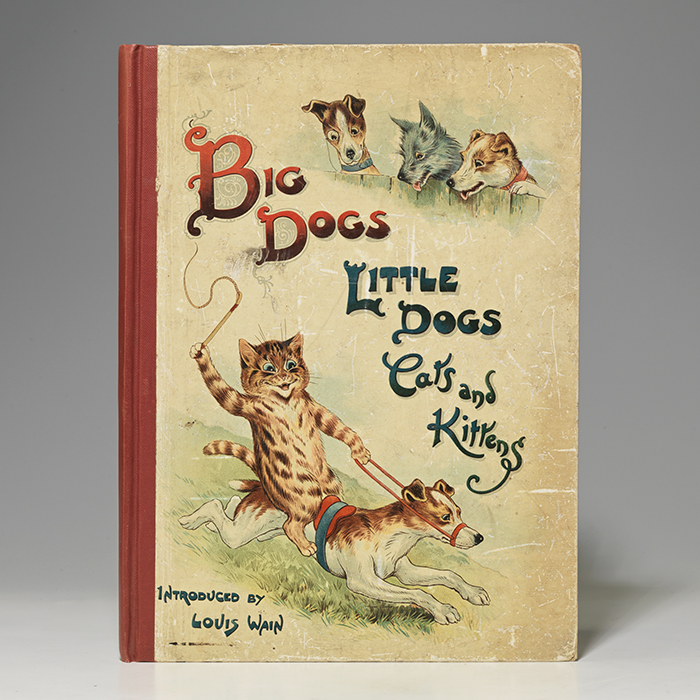 Big Dogs Little Dogs Cats and Kittens