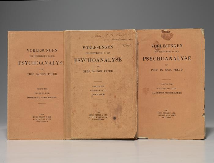 Vorlesungen zur Einfuhrung in die Psychoanalyse