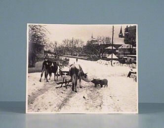 "Photographic print signed. [""Esztergom""]"